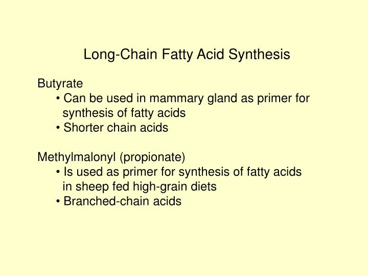 Long-Chain Fatty Acid Synthesis