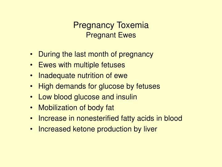 Pregnancy Toxemia