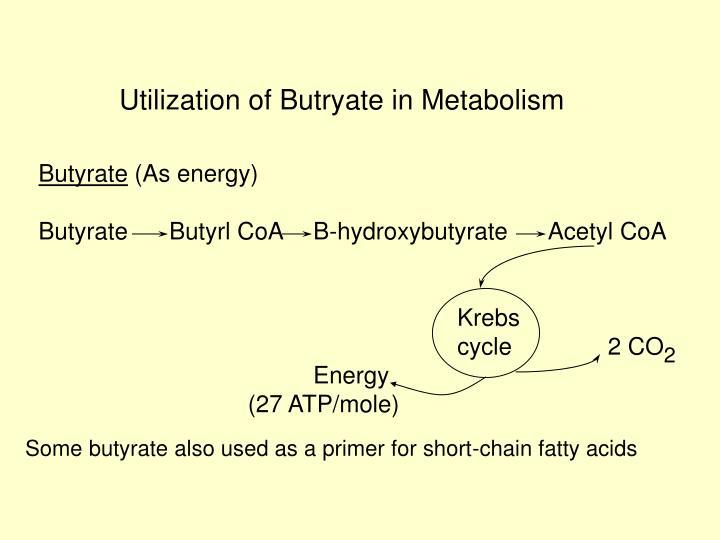 Utilization of Butryate in Metabolism