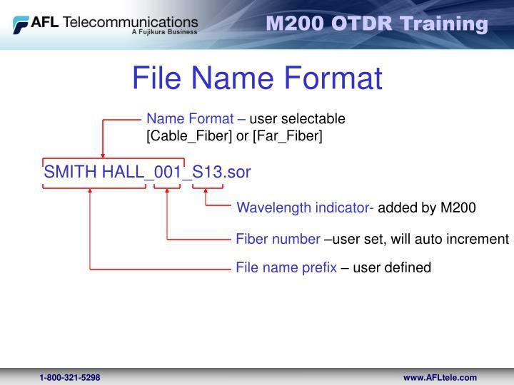 File Name Format