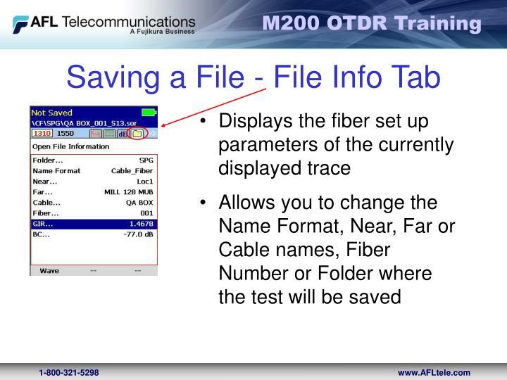 Saving a File - File Info Tab