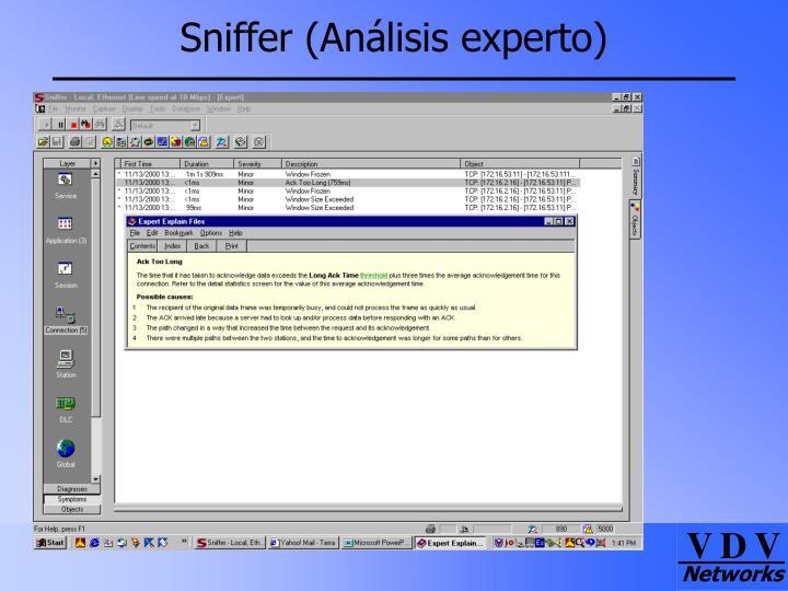 Sniffer (Análisis experto)