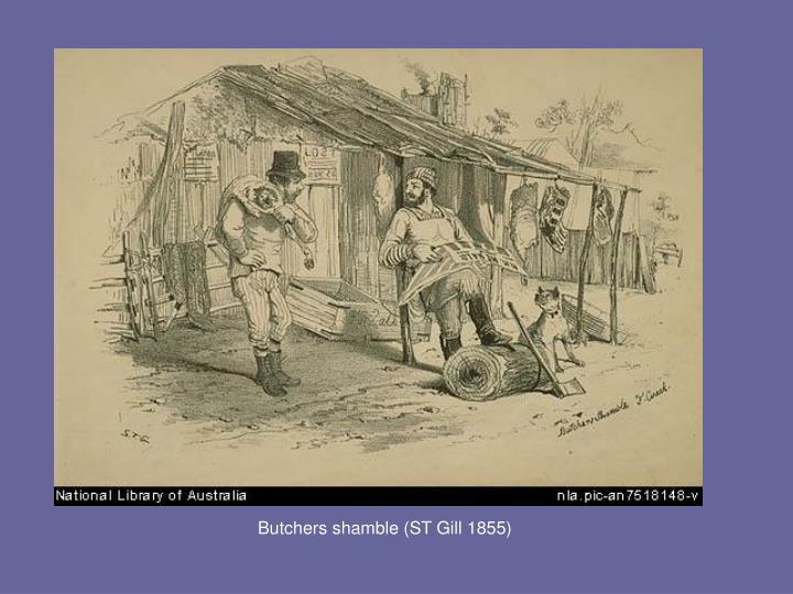 Butchers shamble (ST Gill 1855)