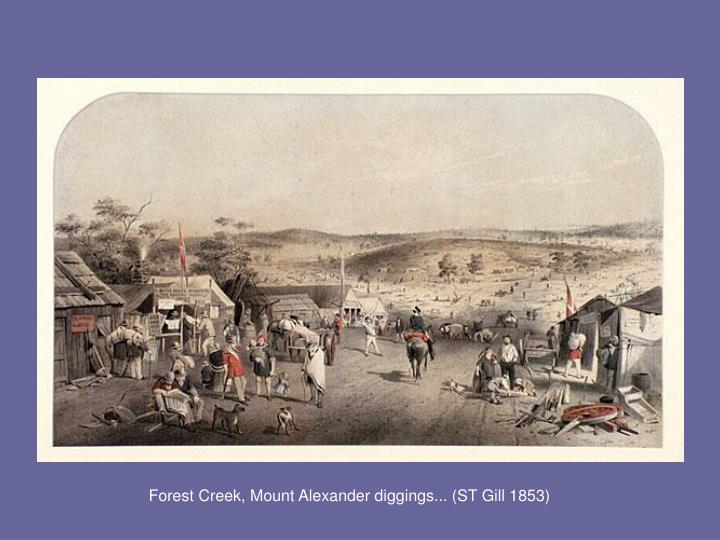 Forest Creek, Mount Alexander diggings... (ST Gill 1853)
