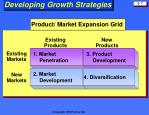 developing growth strategies