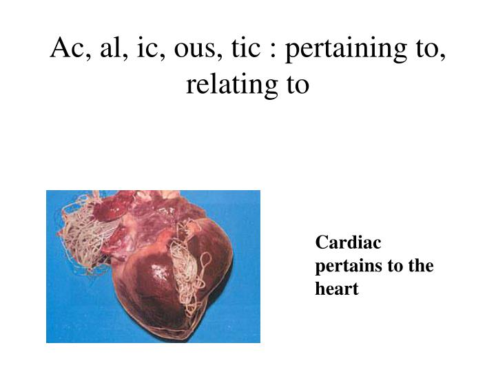 Ac al ic ous tic pertaining to relating to