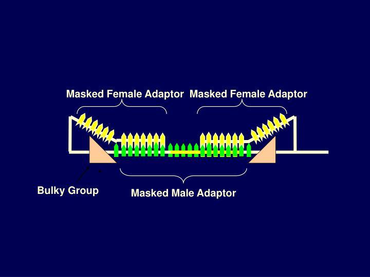 Masked Female Adaptor