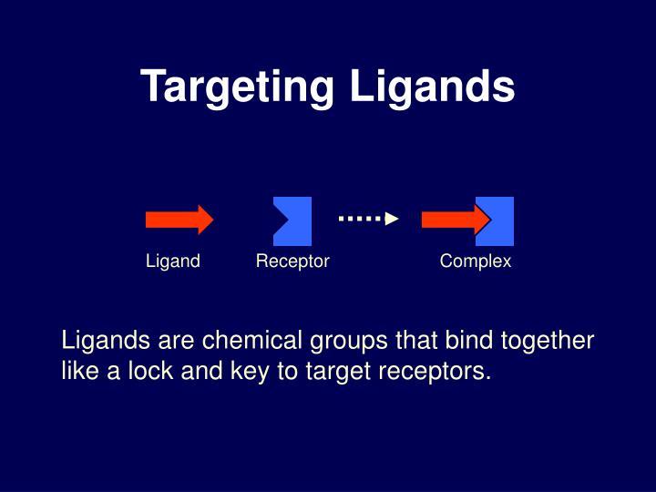 Targeting Ligands