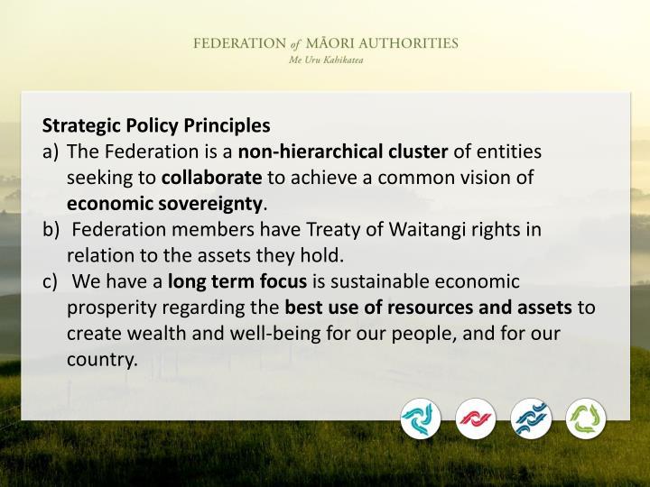 Strategic Policy Principles