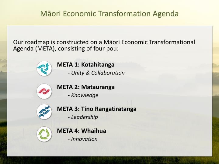 Māori Economic Transformation Agenda