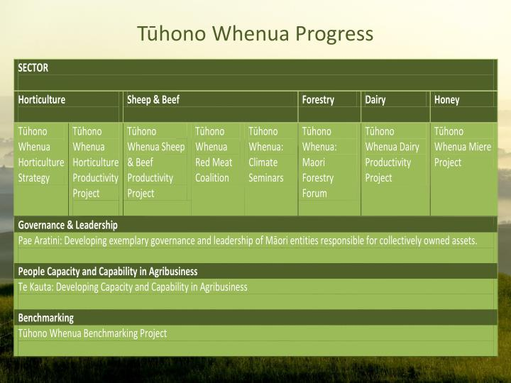 Tūhono Whenua Progress