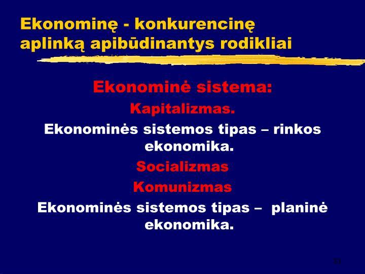 Ekonominę - konkurencinę aplinką apibūdinantys rodikliai