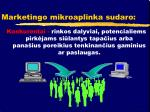 marketingo mikroaplinka sudaro1