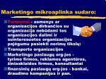 marketingo mikroaplinka sudaro2