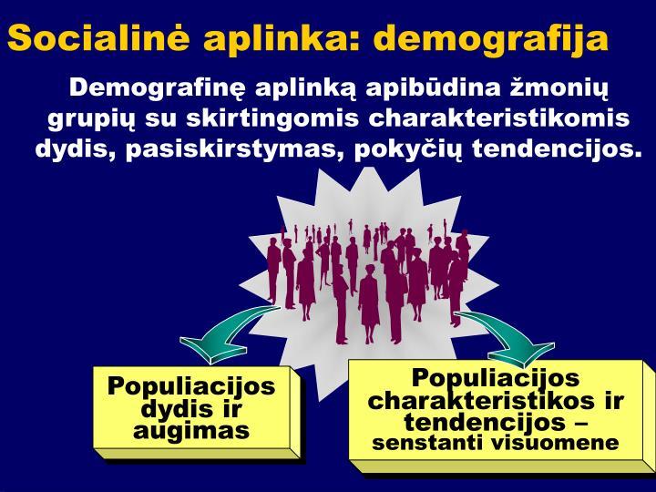 Socialinė aplinka: demografija