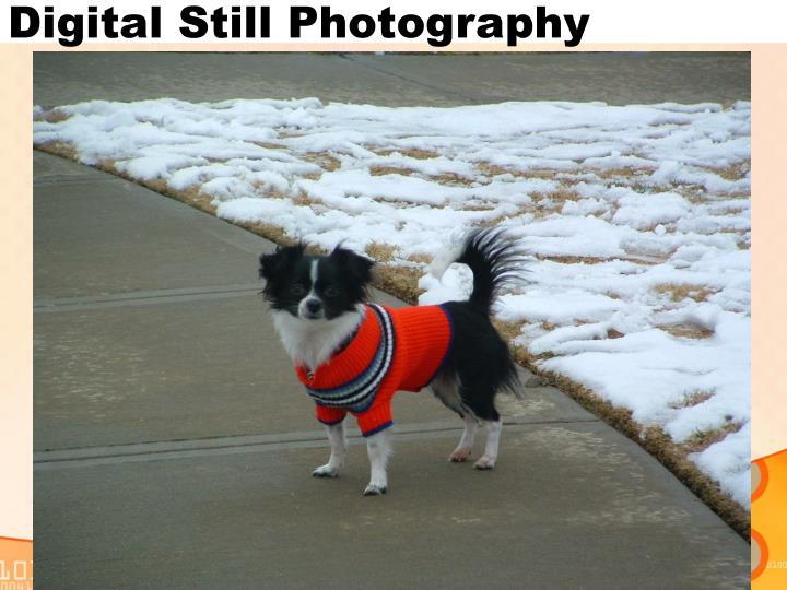 Digital Still Photography
