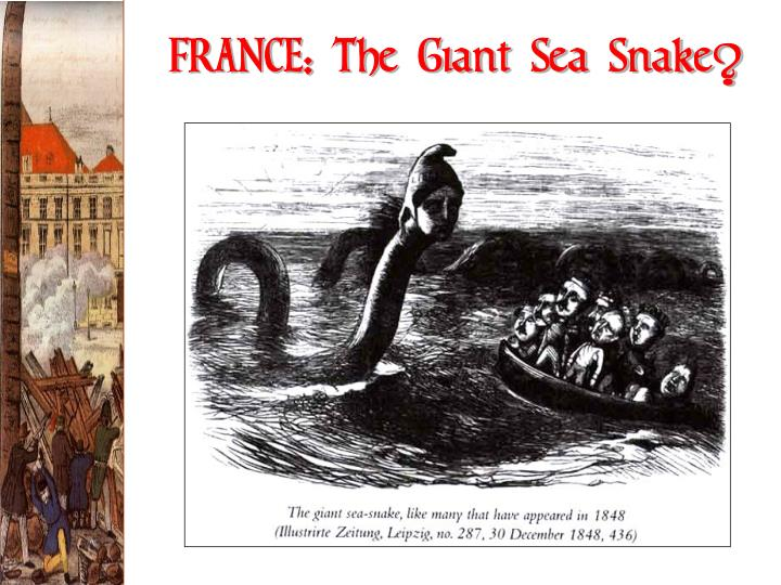 FRANCE: The Giant Sea Snake?