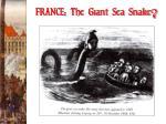 france the giant sea snake