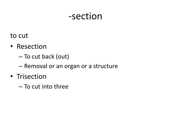 -section
