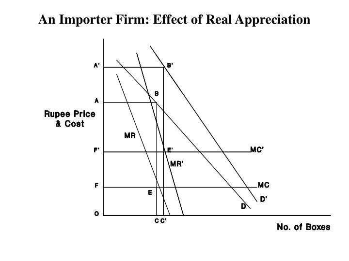 An Importer Firm: Effect of Real Appreciation