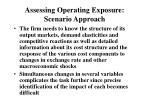 assessing operating exposure scenario approach1