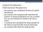 capital punishment international perspective