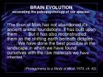 brain evolution excavating the paleopsychology of our species