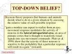 top down belief1