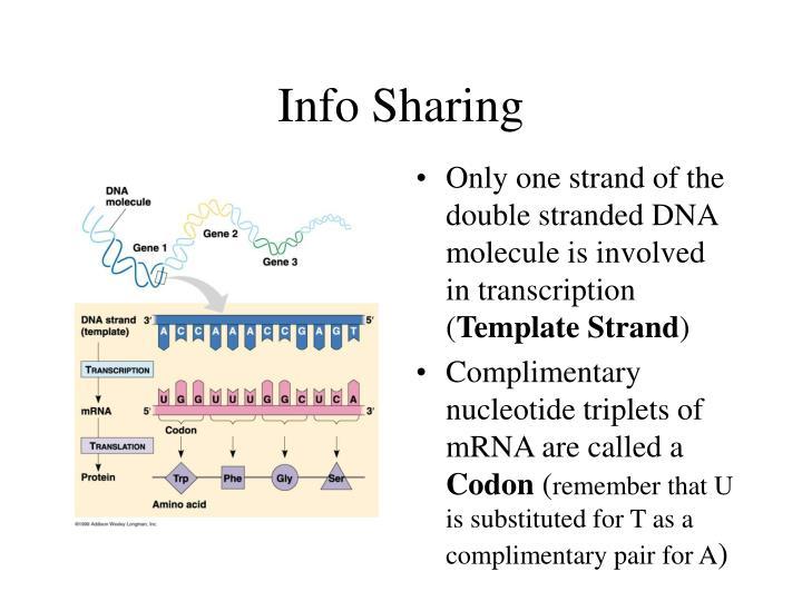 Info Sharing