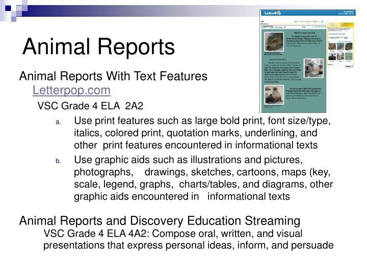 Animal Reports