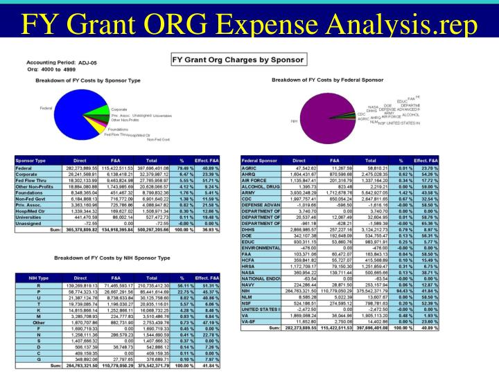 FY Grant ORG Expense Analysis.rep