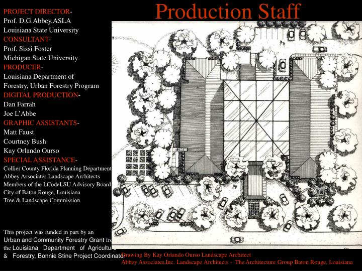 Production Staff