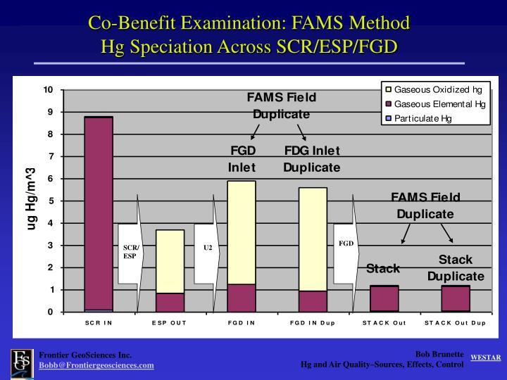Co-Benefit Examination: FAMS Method