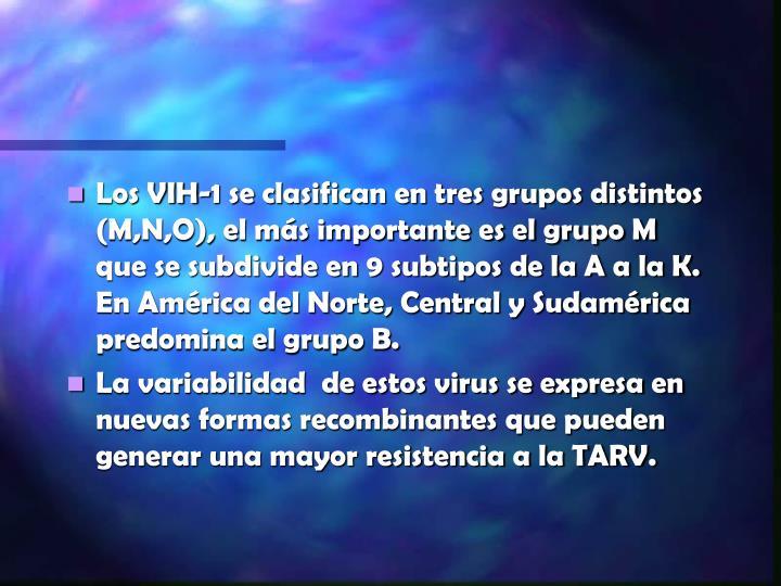 Los VIH-1 se clasifican en tres grupos distintos (M,N,O), el más importante es el grupo M que se subdivide en 9 subtipos de la A a la K. En América del Norte, Central y Sudamérica predomina el grupo B.