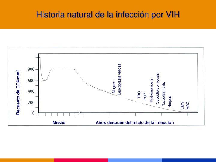 Historia natural de la infección por VIH