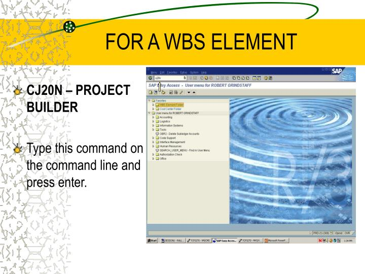FOR A WBS ELEMENT