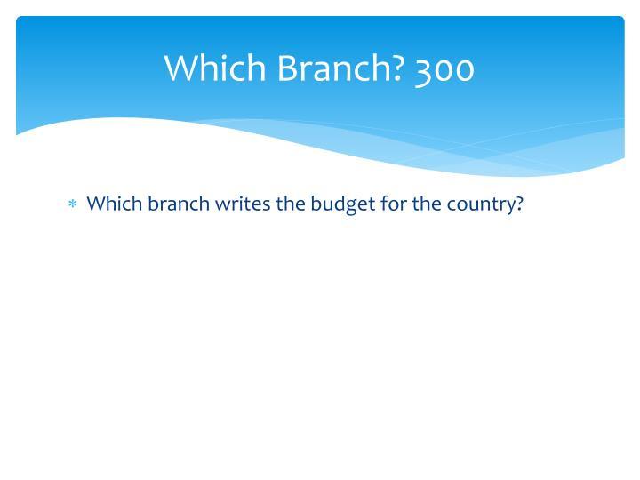 Which Branch? 300