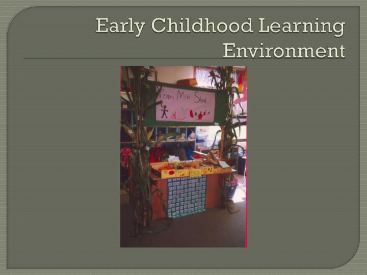 Early childhood learning environment
