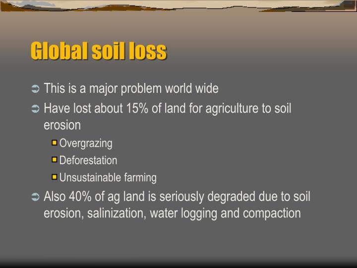 Global soil loss