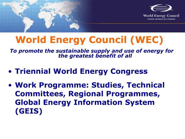 World Energy Council (WEC)