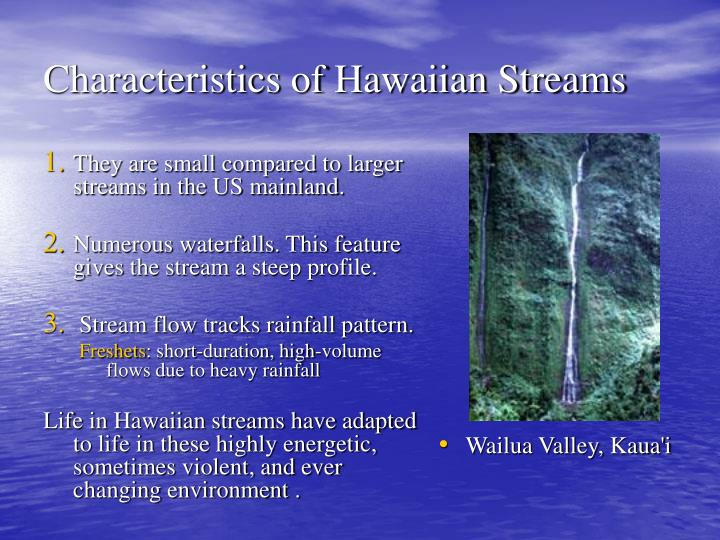 They are small compared to larger streams in the US mainland.