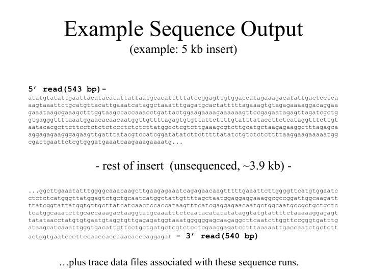 Example Sequence Output