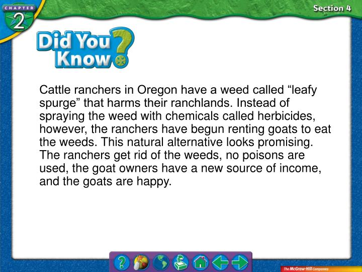 "Cattle ranchers in Oregon have a weed called ""leafy spurge"" that harms their ranchlands. Instead of spraying the weed with chemicals called herbicides, however, the ranchers have begun renting goats to eat the weeds. This natural alternative looks promising. The ranchers get rid of the weeds, no poisons are used, the goat owners have a new source of income, and the goats are happy."