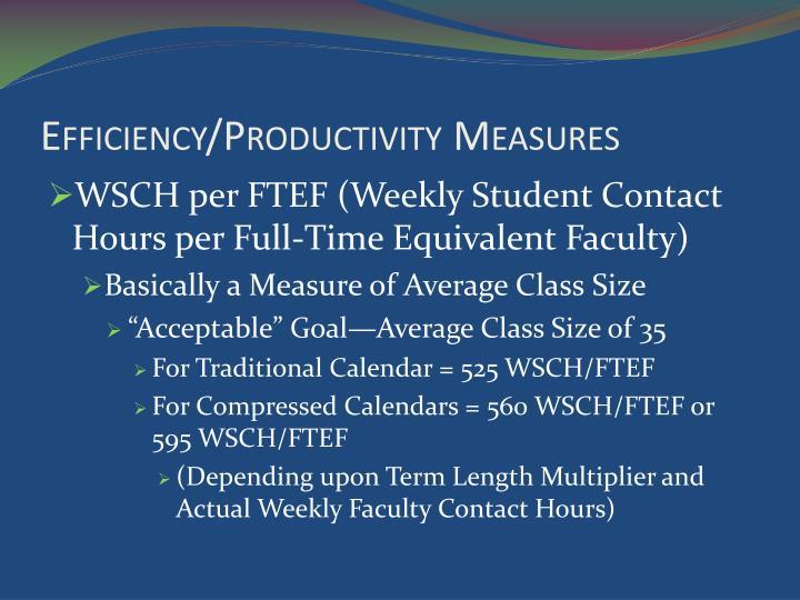 Efficiency/Productivity Measures