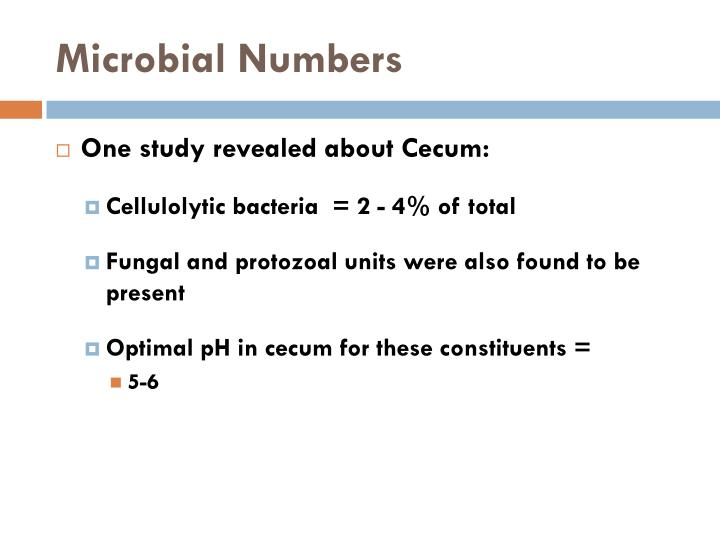 Microbial Numbers