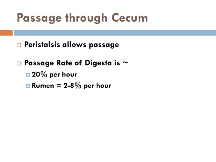 Passage through cecum