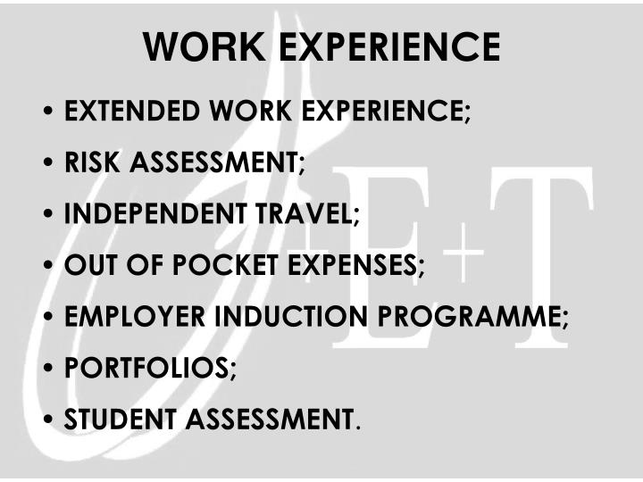 EXTENDED WORK EXPERIENCE;