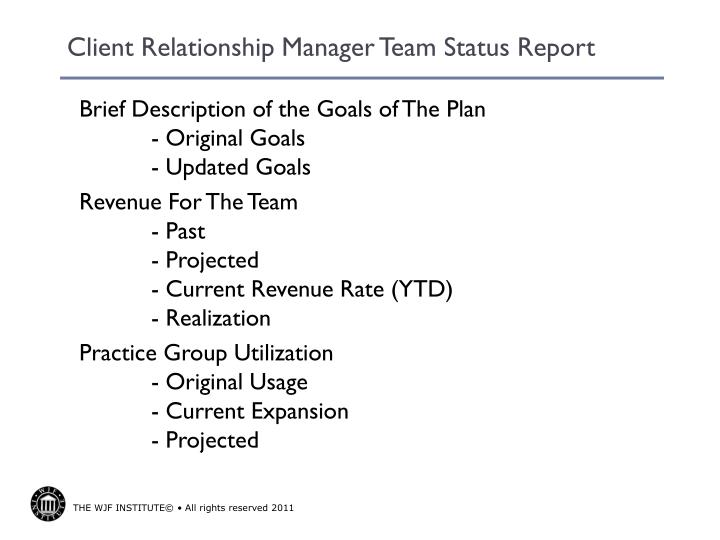 Client Relationship Manager Team Status Report