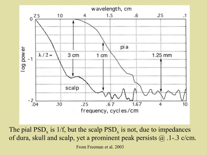 Comparison of scalp and intracranial PSDx
