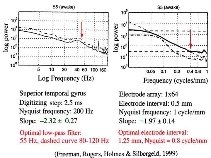 EEG awake intracranial